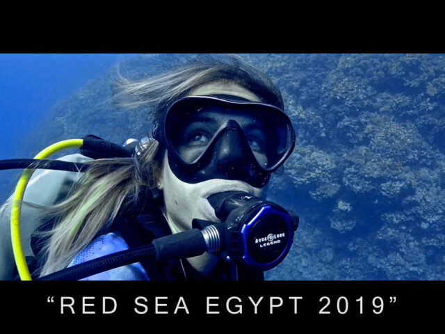 RED SEA EGYPT 2019
